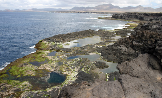 Group pf natural pools of los charcones in Lanzarote